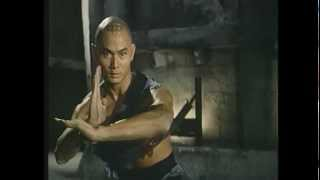 """""""Fists and Guts"""" (1980) Full End Fight - Gordon Liu vs. Lo Lieh crouching tiger style"""