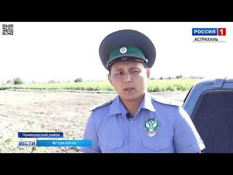 О мониторинге Россельхознадзором земель сельхозназначения в Астраханской области