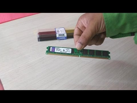 Kingston Budget 1GB DDR2 RAM for Desktop