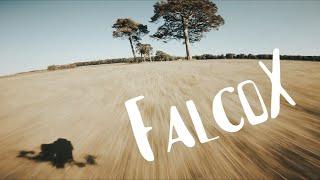 I've finally done it... FalcoX & 6S ~ FPV Freestyle