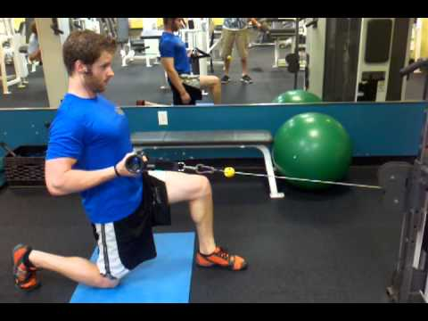 One Arm Half Kneeling Cable Row Exercise Com
