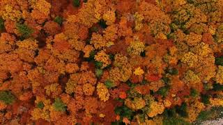 Autumn in New Hampshire with the DJI Phantom 4