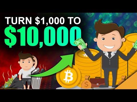 Otto bitcoin trader