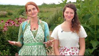 Online Herbal Medicine Making Course