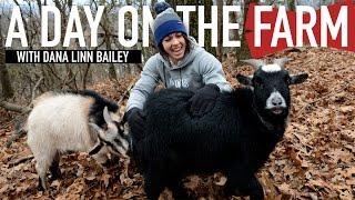 A DAY ON THE FARM W/ DANA LINN BAILEY