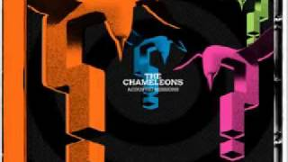 THE CHAMELEONS-SECOND SKIN