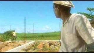 Manev Mason (1) - Trioco
