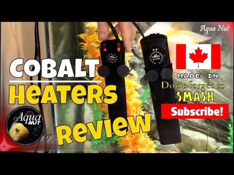 Cobalt Aquarium Fish Tank Heater Review Easy-Therm, Neo-Therm, Accu-Therm