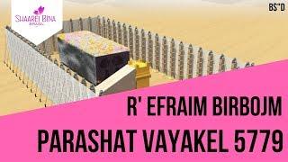 Parashá Vayakel