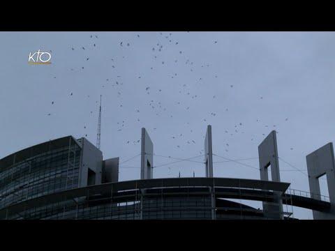 Parlement européen et Conseil de l'Europe : Pourquoi le Pape à Strasbourg ?