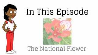preview picture of video 'The National Flower'