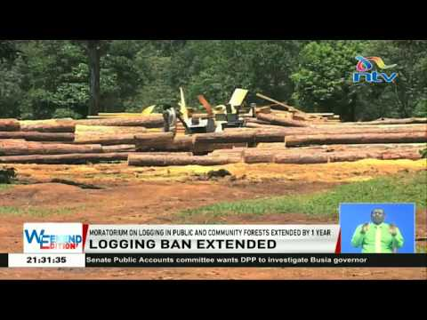 Moratorium on logging in public and community forests extended by 1 year