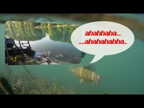 Dove in Stavropol per andare su pesca