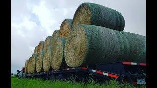 Hauling Hay - Heavy Weight with a Ram 4500 Cummins