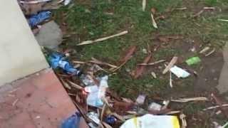 preview picture of video 'Villa comunale di Melito di Porto Salvo nel  degrado assoluto'