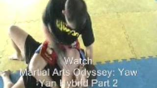 Martial Arts Odyssey: Yaw Yan Hybrid Part 1