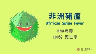 解鎖時事科學:非洲豬瘟病毒
