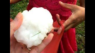 卵ぐらいの大きさの雹が降ってきたー!