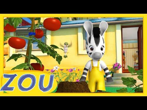 Zou en Français 🌱 LE POTAGER  🍅 Dessins animés pour enfants