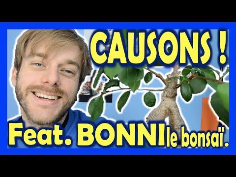 Causons ! Avec Bonni, le bonsaï.