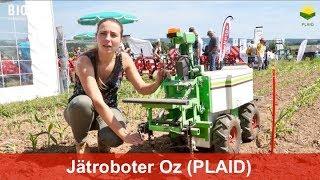 Roboter für die Unkrautregulierung an den Oekofeldtagen 2017 (Oz von Naïo Technologies)
