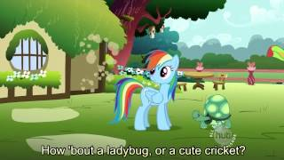 Find A Pet Song [With Lyrics] - My Little Pony Friendship is Magic Song