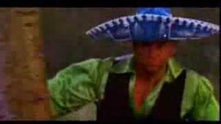 """Chixdiggit! - """"Spanish Fever"""""""