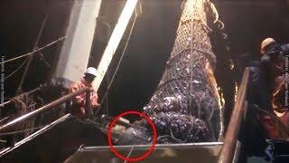 When These Fishermen Landed A Giant Catch, They Found An Unforeseen Creature Lying In Wait