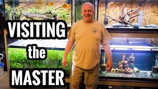 Visiting Master Breeder Dean's Fishroom!
