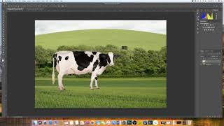 How to insert an image into another image Photoshop | EASY EXPLANATION