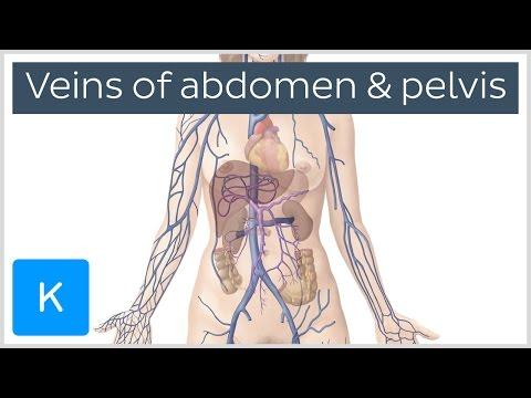 Varicite de pelvis mici la femei