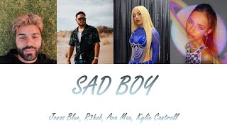 Jonas Blue, R3hab, Ava Max, Kylie Cantrall - Sad Boy (Lyrics - Letra en español)
