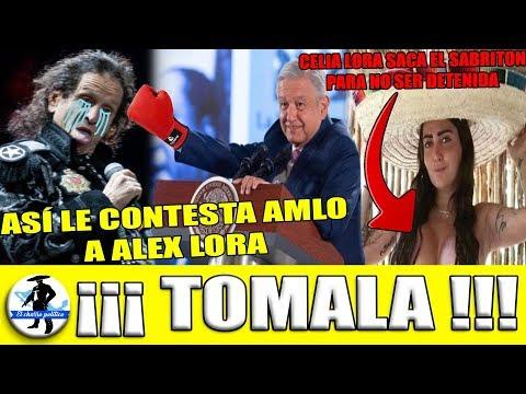 ¡Así Le Contesta Amlo a Alex Lora SU Mentada! Celia Lora Se Saca El CHICHARRON Para No Ser Detenida