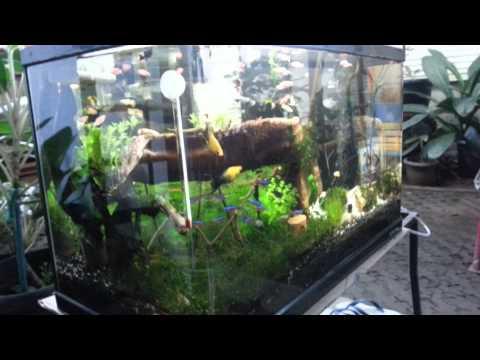 Diy aquarium chiller
