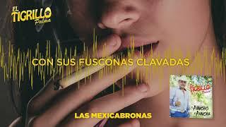 EL TIGRILLO PALMA -      Lyrics Las Mexicabronas