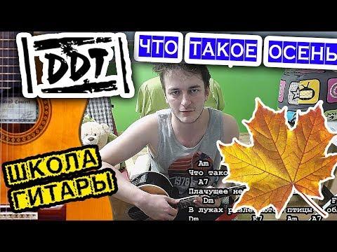 ДДТ-Что такое осень НА ГИТАРЕ 🎸 Школа гитариста