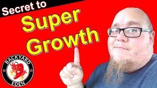 How to fertilize plants - The secret to super growth
