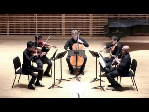 Various Artists - Brahms Clarinet Quintet in B Minor, Op. 115 (1891): Allegro