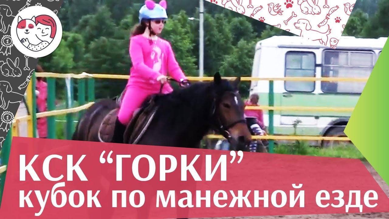 Летний кубок КСК Горки по манежной езде КЮР часть 18 на ilikepet