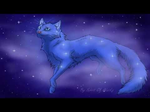 Колыбельная для кошки (коты-воители)