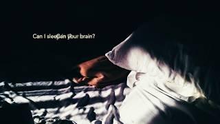 Can I Sleep in Your Brain - Ezra Furman (Lyric Video)