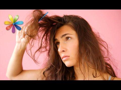 Маска против сухих и ломких волос от певицы Алёши! – Все буде добре. Выпуск 697 от 02.11.15