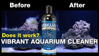 Will Vibrant solve your algae problems? Does it really work? | BRStv Investigates