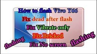 Vivo Y66 Flash Stock Rom Fix Hang On Logo - hmong video