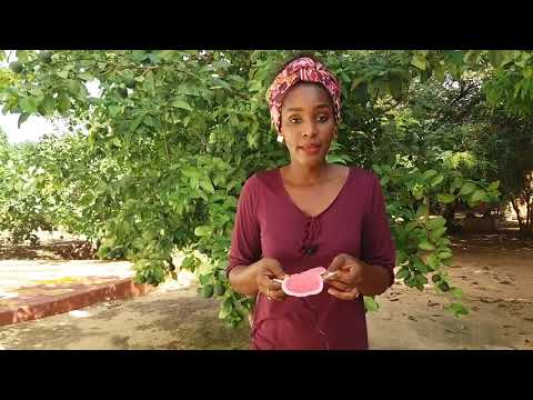 La serviette hygiénique réutilisable ApiAfrique - en wolof