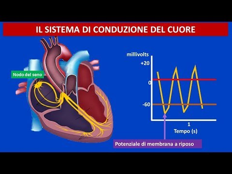 Definizione cardiopatia ipertensiva
