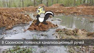 В Сосенском появился канализационный ручей