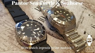 Pantor Sea Turtle - Pantor Seahorse - First Impressions