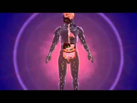 Какие болезни возникают при недостатке инсулина