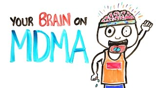 Your Brain On MDMA